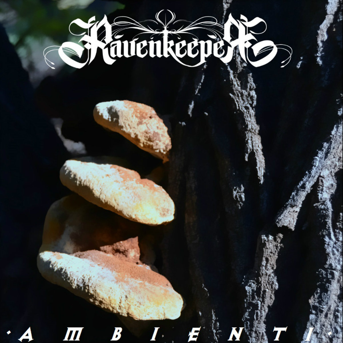 Ambient I