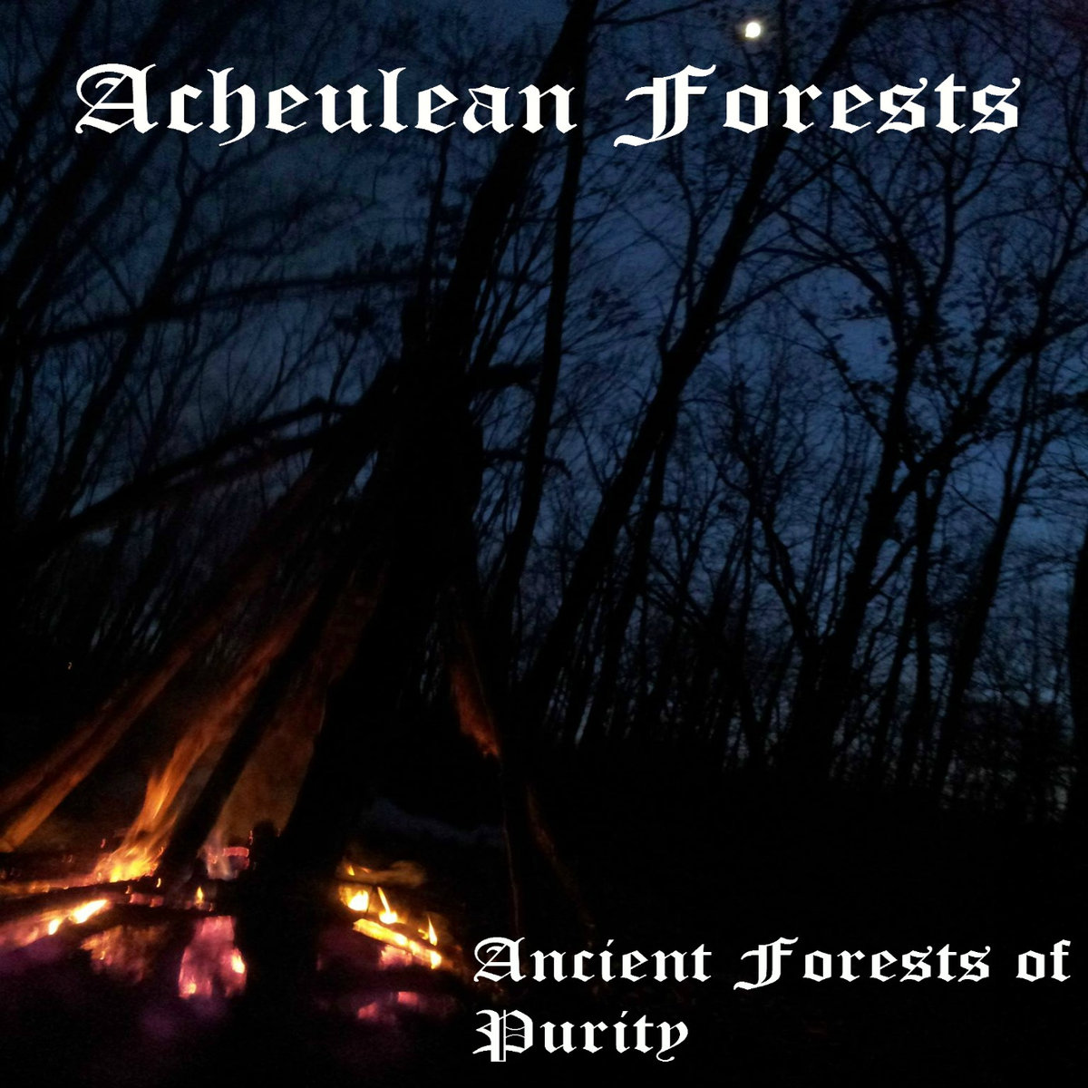 Ancient Forests Of Purity